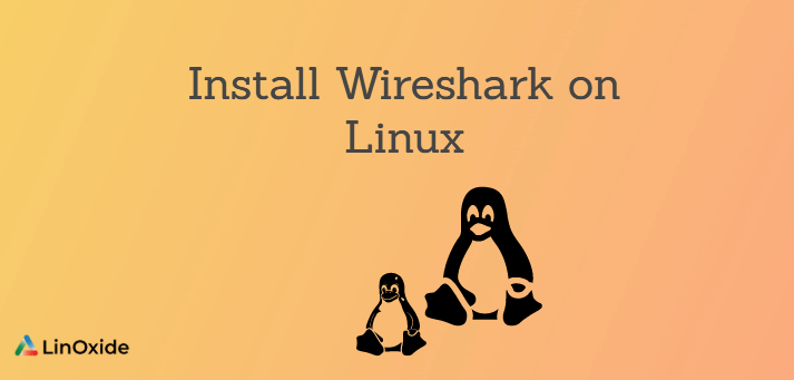 How to Install Wireshark on Linux