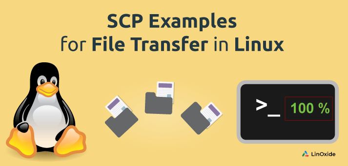 How to Use scp command to Transfer Files