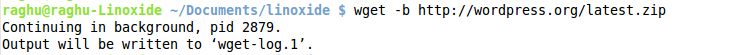 running wget in background