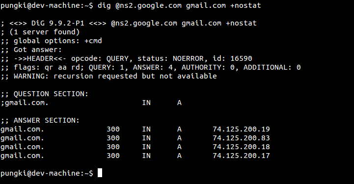 Query using specific DNS