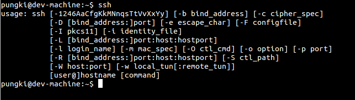 Linux SSH Commands Tutorial with Examples