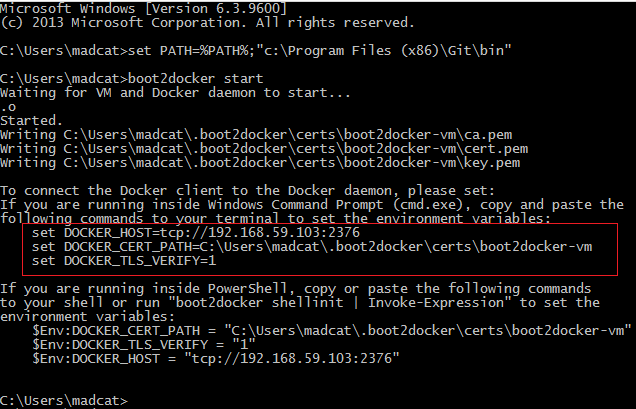 Docker CMD Variables