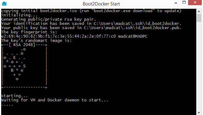 Starting Boot2Docker