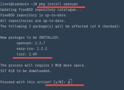 Install OpenVPN in FreeBSD