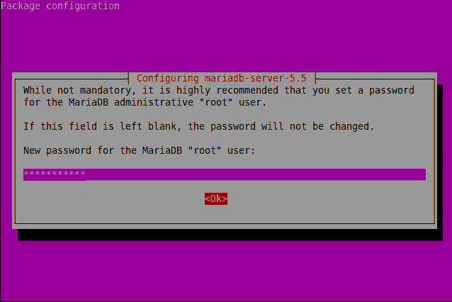 Set MariaDB Root Password Ubuntu