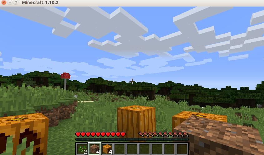 The game of Minecraft