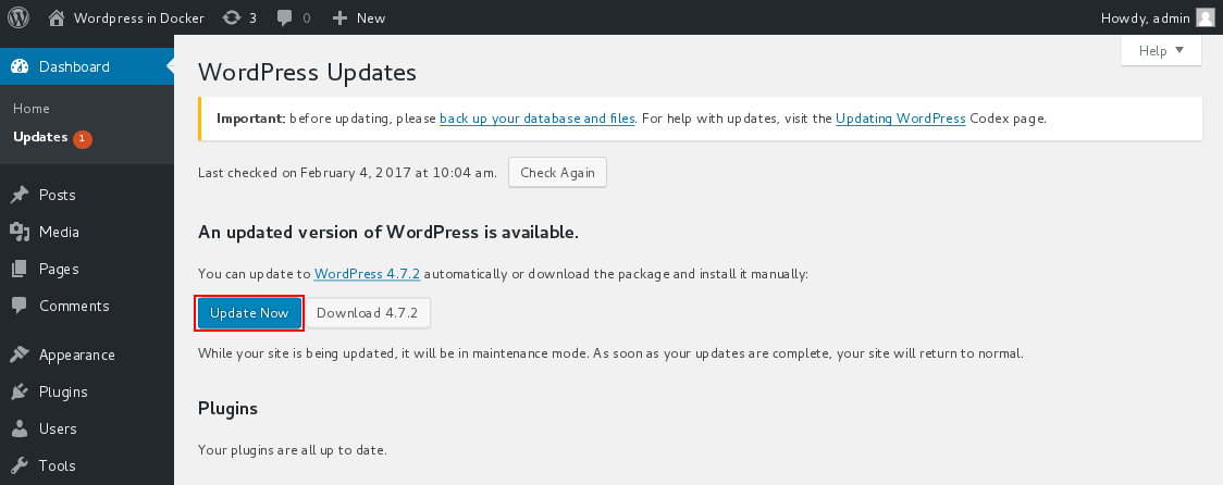 Wordpress update to newer version