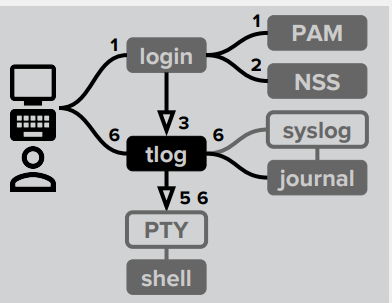 Tlog working process
