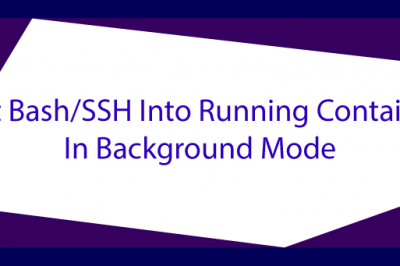 get bash ssh docker