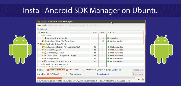 How to Install Android SDK Manager on Ubuntu 18.04