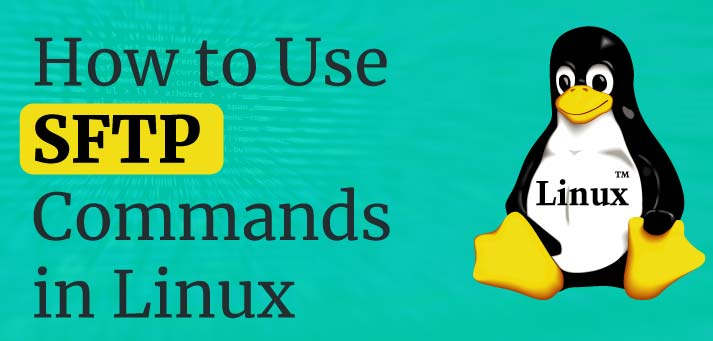 Use Linux SFTP Command to Transfer Files on Remote Servers