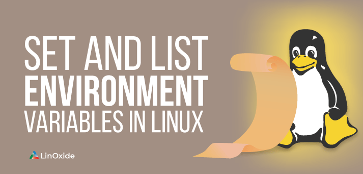 set enviornment variable in linux