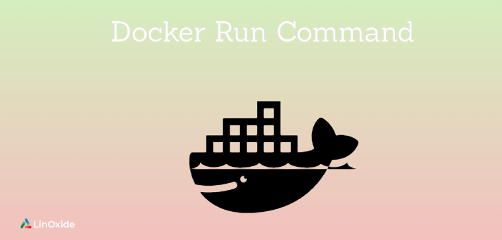 docker run command
