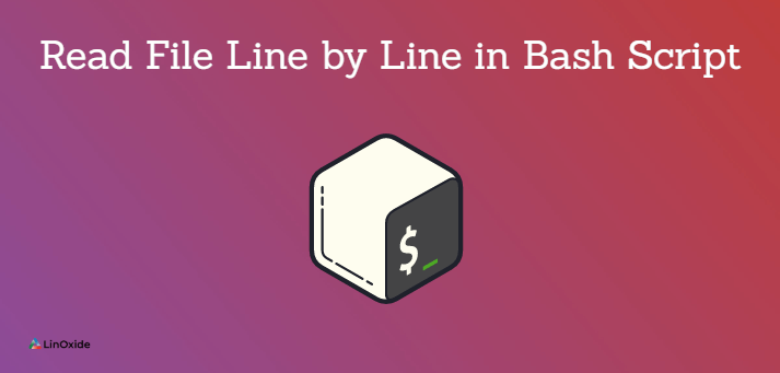 How to Read File Line by Line in Bash Script [3 Methods]