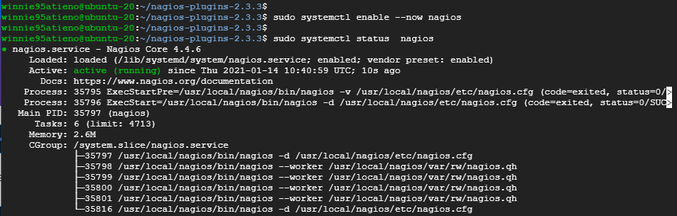 Start and enable Nagios service