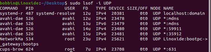 open files by udp